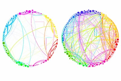 "This diagram demonstrates the simplified results that can be obtained by using quantum analysis on enormous, complex sets of data. Shown here are the connections between different regions of the brain in a control subject (left) and a subject under the influence of the psychedelic compound psilocybin (right). This demonstrates a dramatic increase in connectivity, which explains some of the drug's effects (such as ""hearing"" colors or ""seeing"" smells). Such an analysis, involving billions of brain cells, would be too complex for conventional techniques, but could be handled easily by the new quantum approach, the researchers say. Courtesy of the researchers"